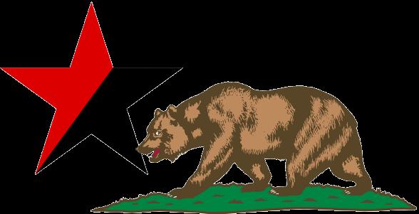 This Bear Eats Fascists